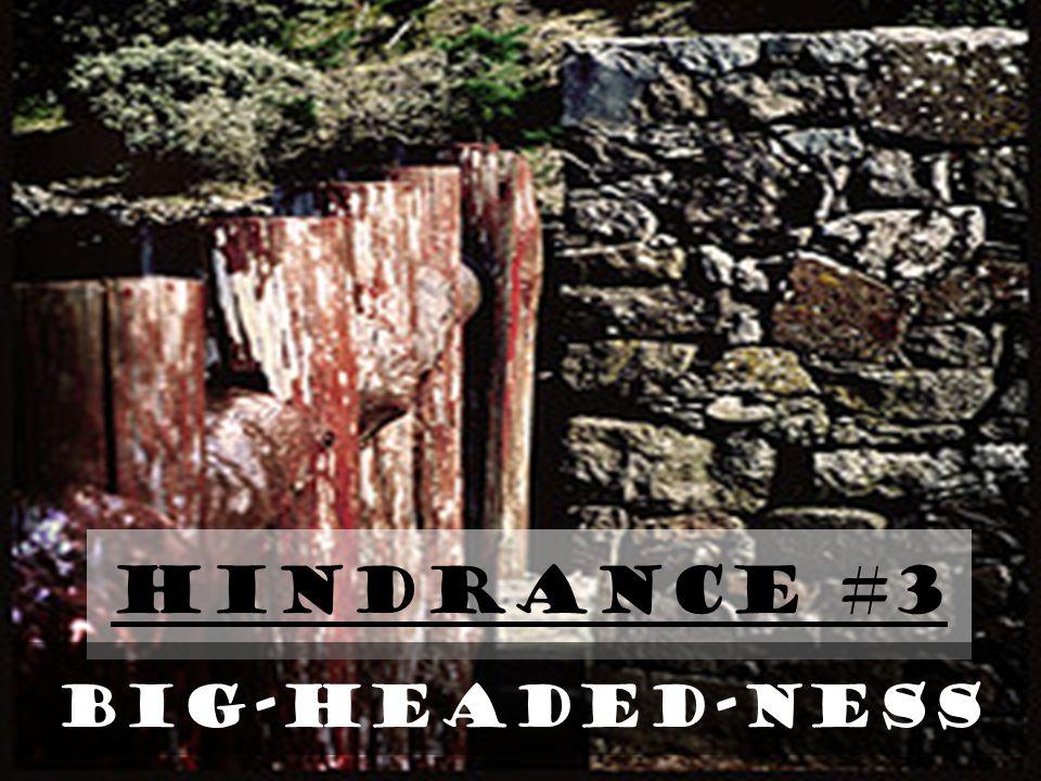 Hindrance #3 BIG-HEADED-NESS