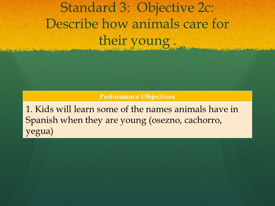 Standard 3: Objective 2c: Describe how animals care for their young.