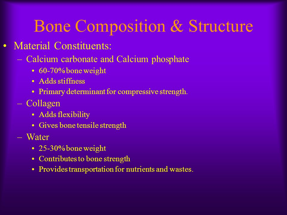 Bone Composition & Structure Structural Organization –Bone mineralization ratio specific to bone –Two categories of porous bone: Cortical bone(70-95% mineral content) Trabecular bone (10-70% mineral content) –More porous bones have: Less calcium phosphate More calcium carbonate Greater proportion of non-mineralized tissue
