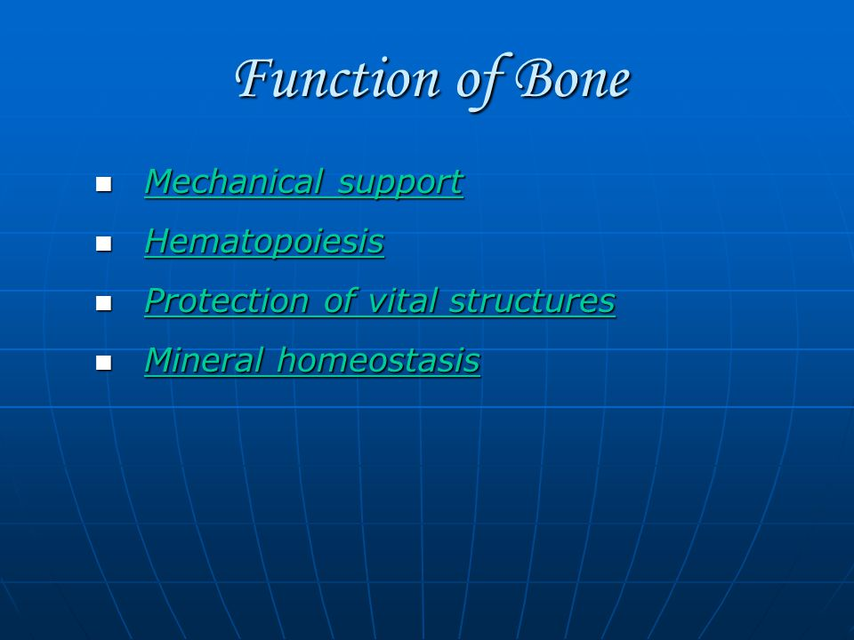 Function of Bone Mechanical support Mechanical support Mechanical support Mechanical support Hematopoiesis Hematopoiesis Hematopoiesis Protection of vital structures Protection of vital structures Protection of vital structures Protection of vital structures Mineral homeostasis Mineral homeostasis Mineral homeostasis Mineral homeostasis