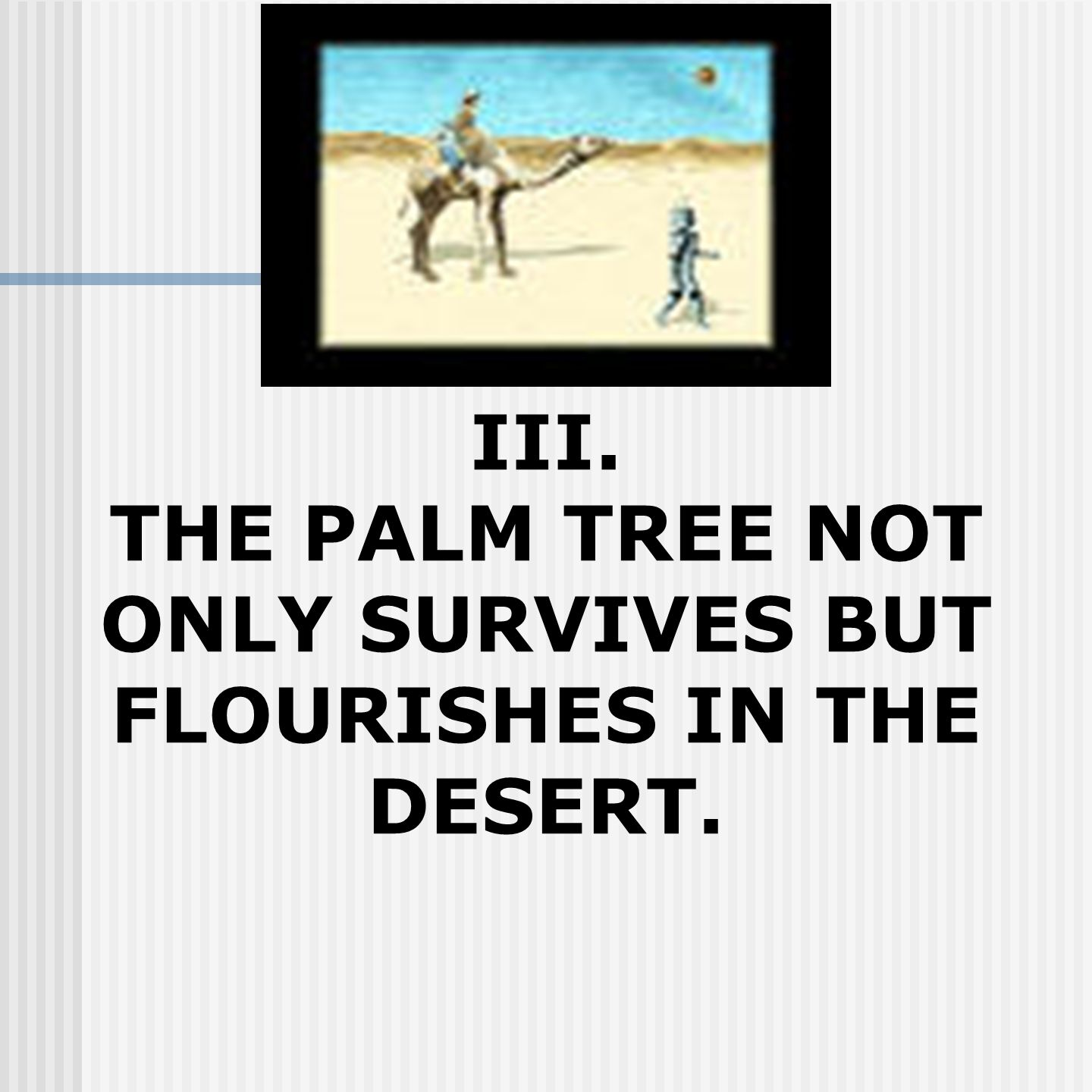 III. THE PALM TREE NOT ONLY SURVIVES BUT FLOURISHES IN THE DESERT.