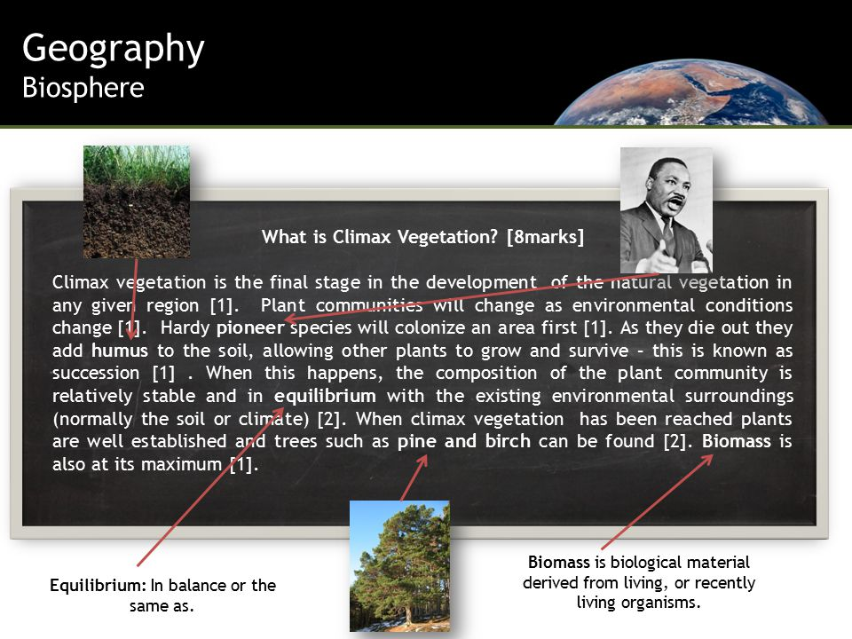 Geography Biosphere What is Climax Vegetation.
