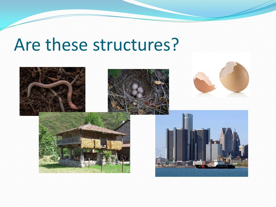 So, what is a structure.Something that protects someone or something Something that supports s.o.