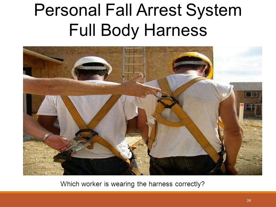 24 Personal Fall Arrest System Full Body Harness Which worker is wearing the harness correctly?