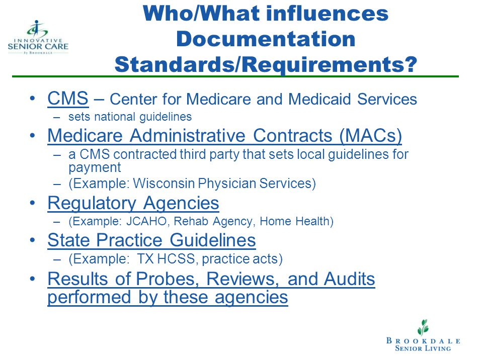 Who/What influences Documentation Standards/Requirements.
