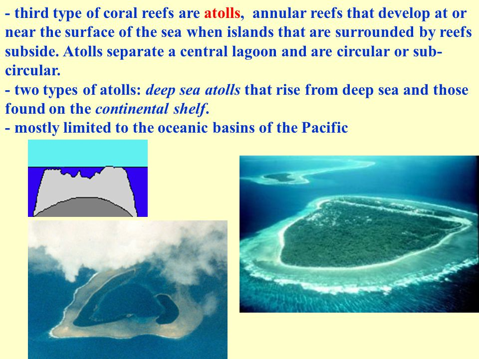 - third type of coral reefs are atolls, annular reefs that develop at or near the surface of the sea when islands that are surrounded by reefs subside
