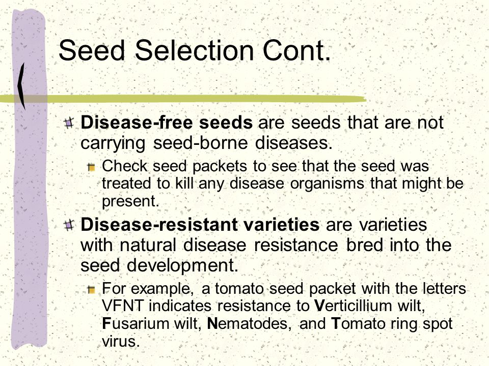 Seed Selection Cont. Disease-free seeds are seeds that are not carrying seed-borne diseases. Check seed packets to see that the seed was treated to ki