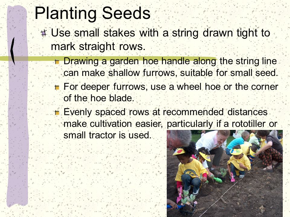 Planting Seeds Use small stakes with a string drawn tight to mark straight rows. Drawing a garden hoe handle along the string line can make shallow fu
