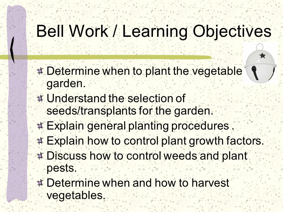 Bell Work / Learning Objectives Determine when to plant the vegetable garden. Understand the selection of seeds/transplants for the garden. Explain ge