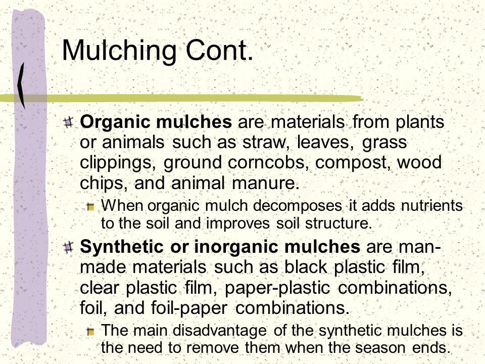 Mulching Cont. Organic mulches are materials from plants or animals such as straw, leaves, grass clippings, ground corncobs, compost, wood chips, and