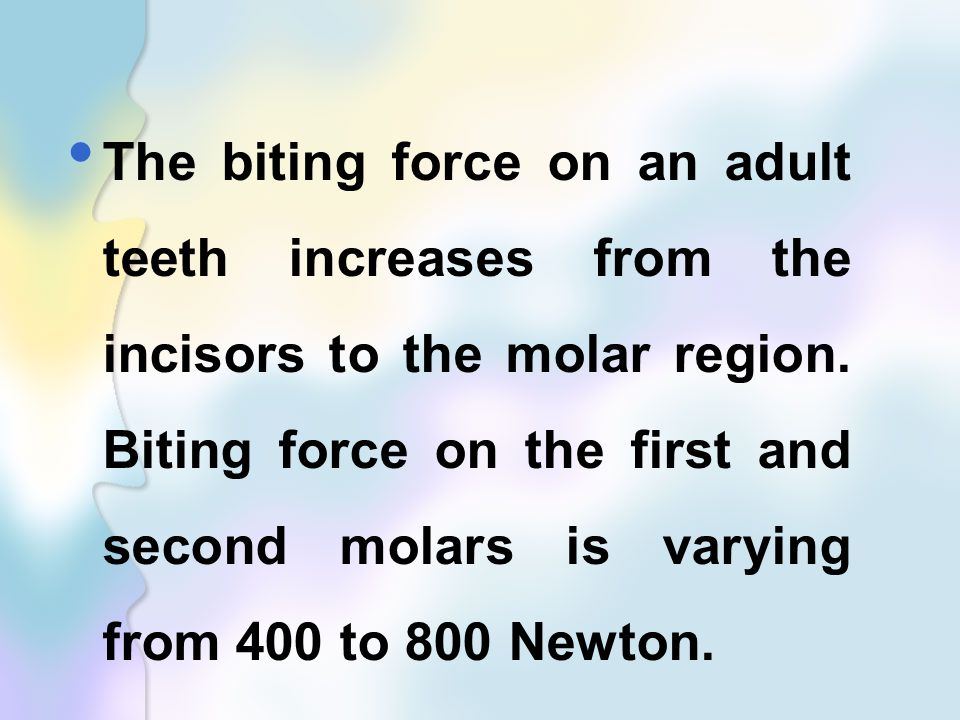 The biting force on an adult teeth increases from the incisors to the molar region.