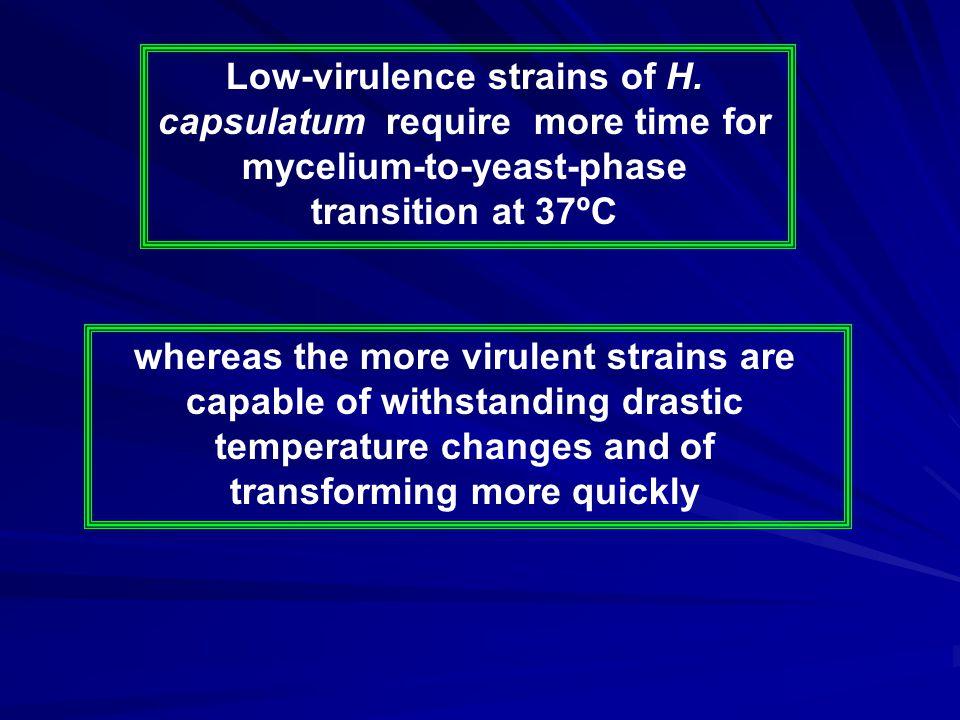 Low-virulence strains of H.