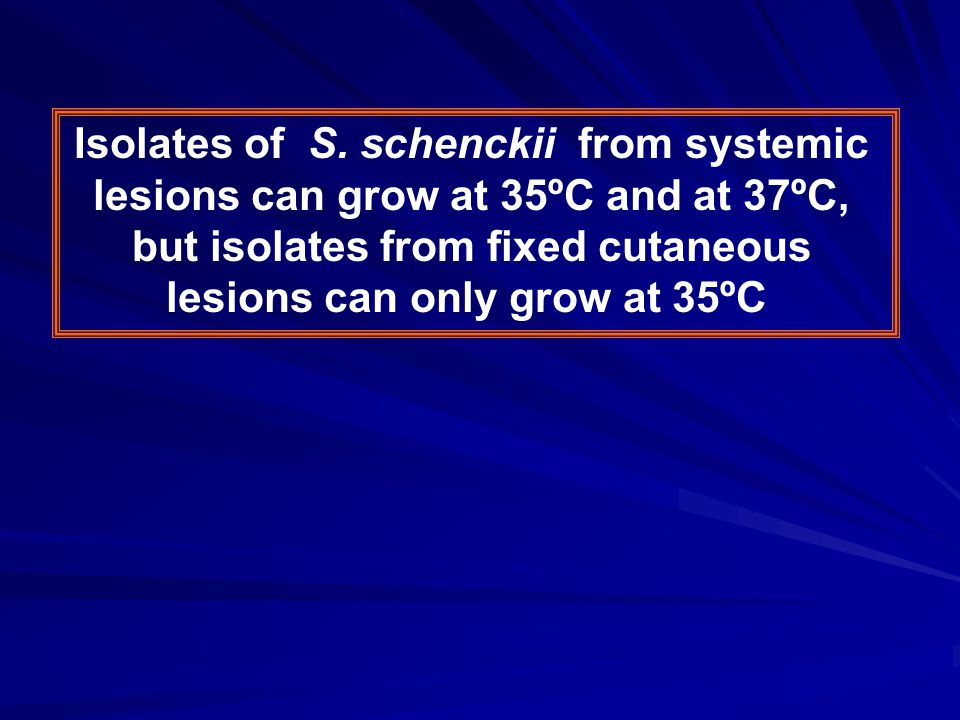 Isolates of S. schenckii from systemic lesions can grow at 35ºC and at 37ºC, but isolates from fixed cutaneous lesions can only grow at 35ºC