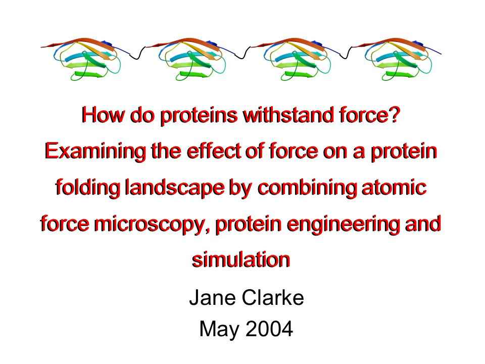 Jane Clarke May 2004 How do proteins withstand force.