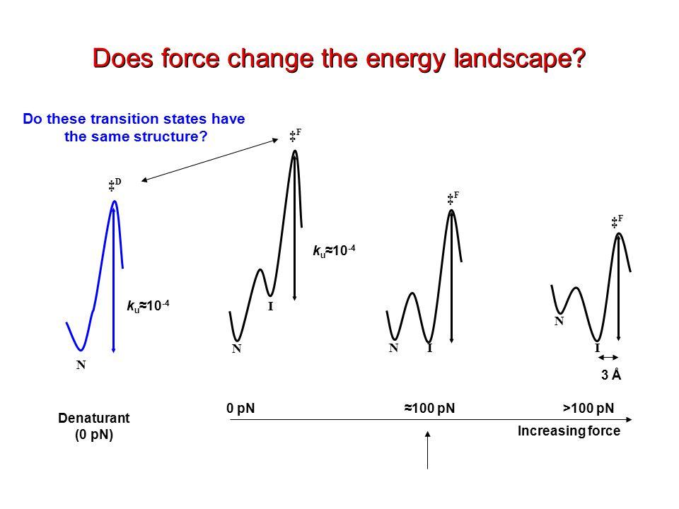 Increasing force 0 pN>100 pN≈100 pN N N N I I I ‡F‡F N ‡D‡D ‡F‡F ‡F‡F k u ≈10 -4 Denaturant (0 pN) Does force change the energy landscape.