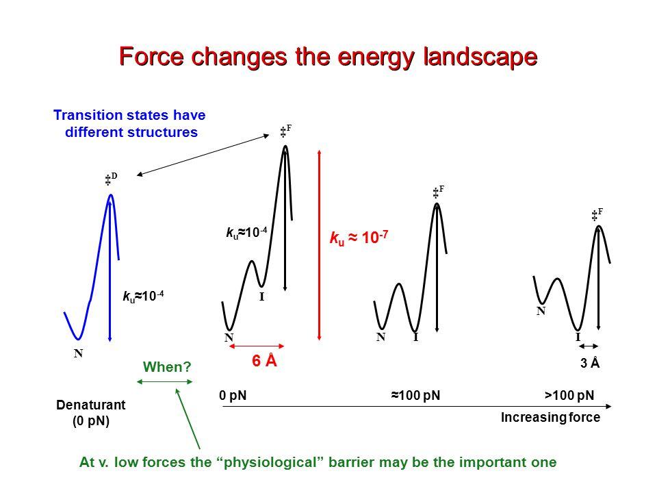 Increasing force 0 pN>100 pN≈100 pN N N N I I I ‡F‡F N ‡D‡D ‡F‡F ‡F‡F k u ≈10 -4 Denaturant (0 pN) Force changes the energy landscape Transition states have different structures 6 Å k u ≈ 10 -7 3 Å When.