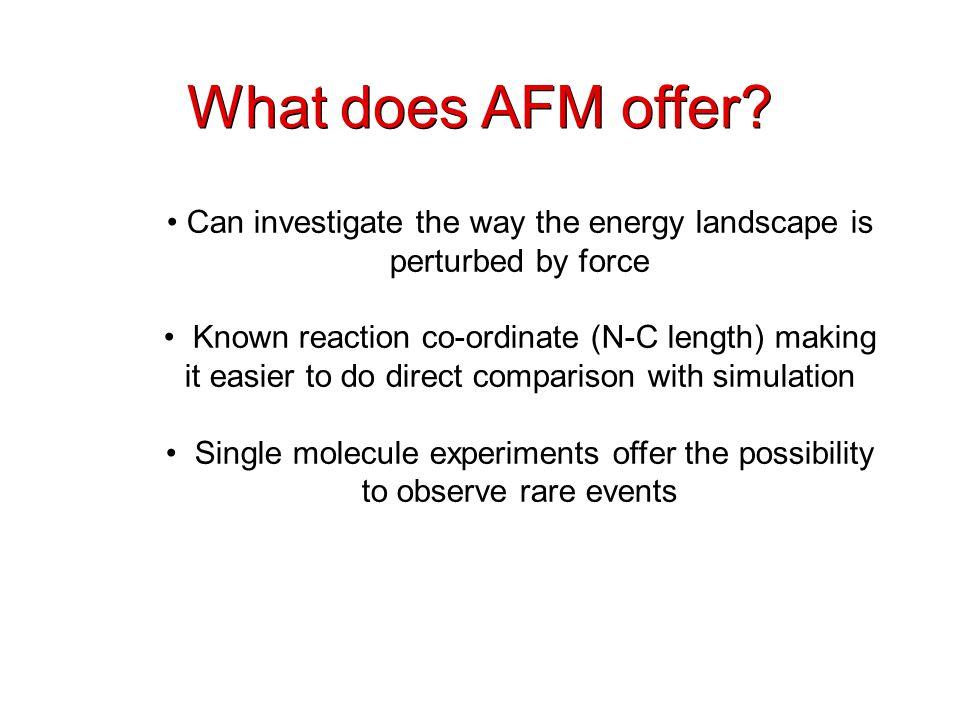 What does AFM offer.