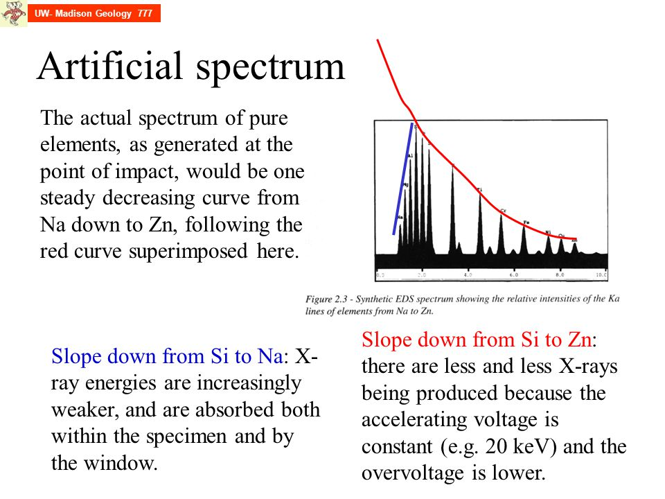 Artificial spectrum Slope down from Si to Na: X- ray energies are increasingly weaker, and are absorbed both within the specimen and by the window. Sl
