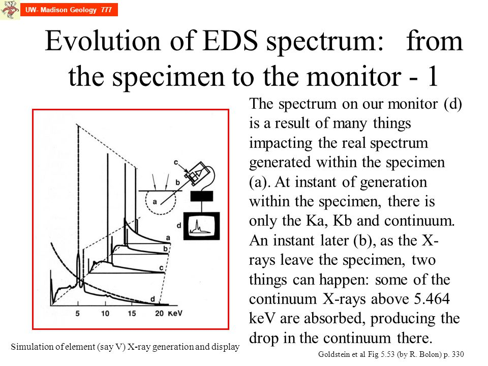 Evolution of EDS spectrum: from the specimen to the monitor - 1 Goldstein et al Fig 5.53 (by R. Bolon) p. 330 The spectrum on our monitor (d) is a res