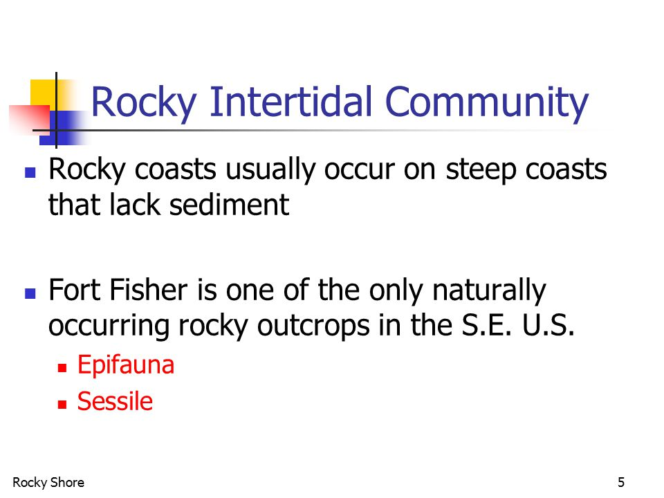 Rocky Shore5 Rocky Intertidal Community Rocky coasts usually occur on steep coasts that lack sediment Fort Fisher is one of the only naturally occurri