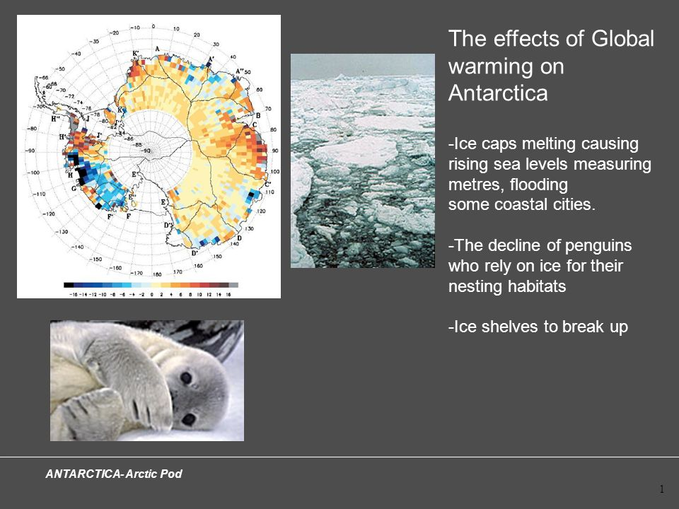 ANTARCTICA- Arctic Pod 1 The effects of Global warming on Antarctica -Ice caps melting causing rising sea levels measuring metres, flooding some coastal cities.