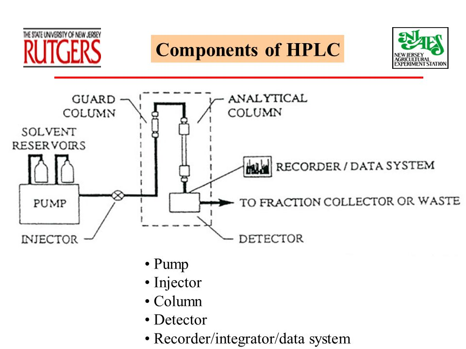 Components of HPLC Pump Injector Column Detector Recorder/integrator/data system