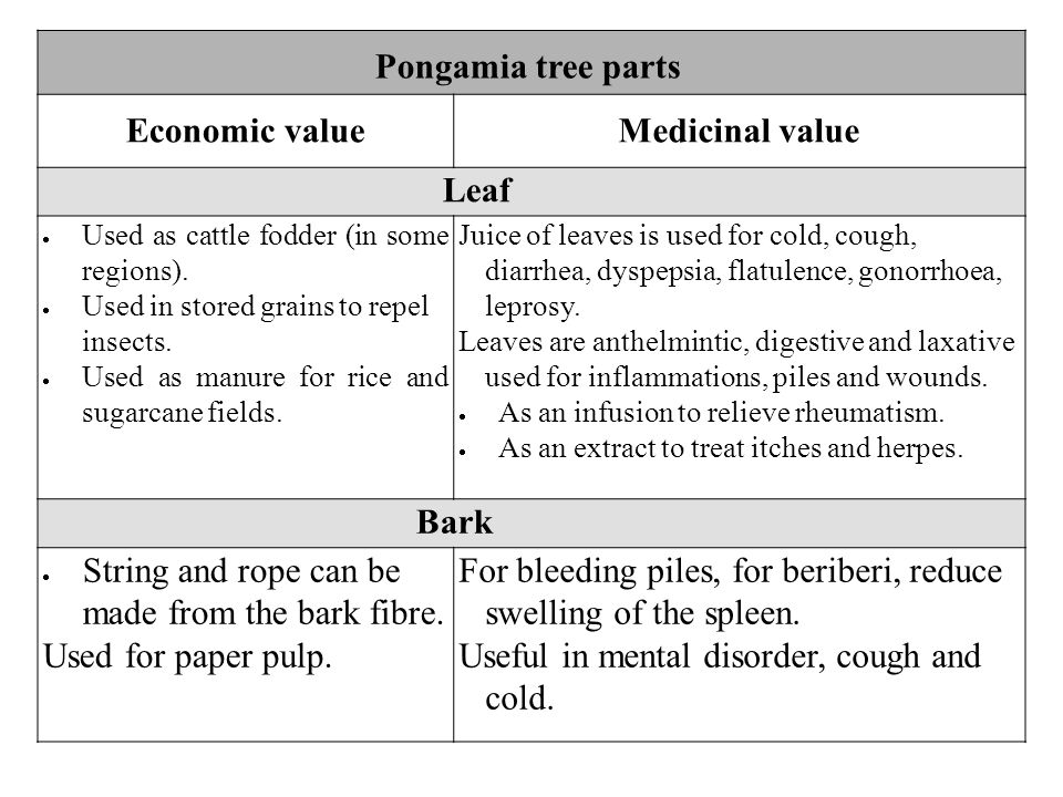 Pongamia tree parts Economic valueMedicinal value Leaf  Used as cattle fodder (in some regions).