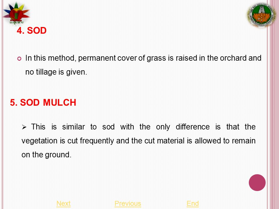In this method, permanent cover of grass is raised in the orchard and no tillage is given.