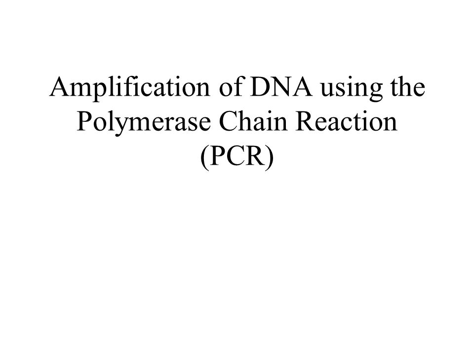 Amplification of DNA using the Polymerase Chain Reaction (PCR)