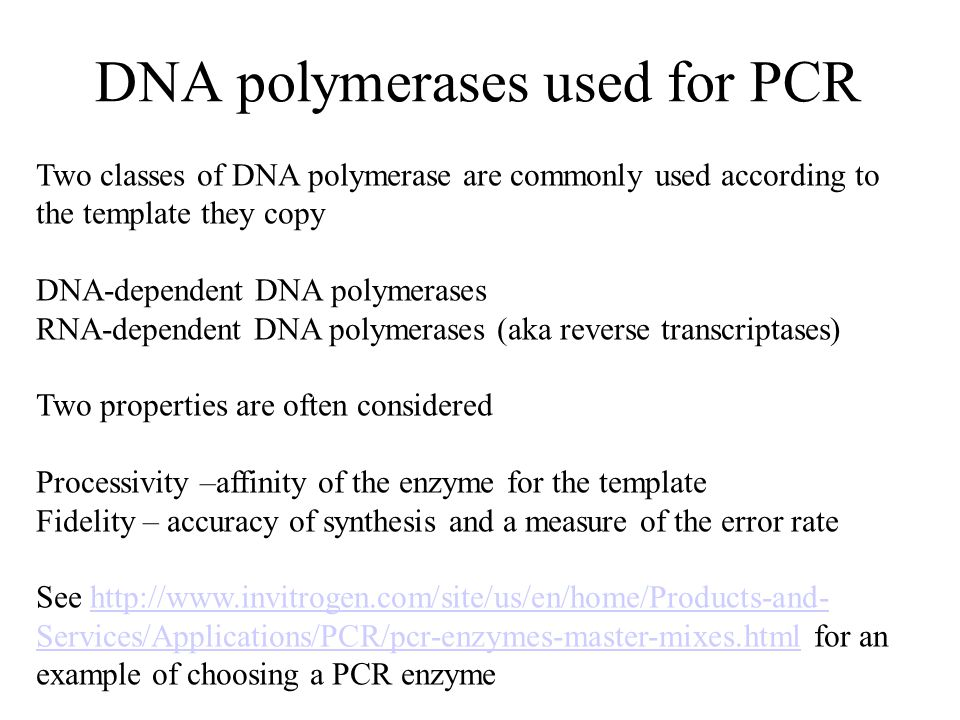 DNA polymerases used for PCR Two classes of DNA polymerase are commonly used according to the template they copy DNA-dependent DNA polymerases RNA-dependent DNA polymerases (aka reverse transcriptases) Two properties are often considered Processivity –affinity of the enzyme for the template Fidelity – accuracy of synthesis and a measure of the error rate See http://www.invitrogen.com/site/us/en/home/Products-and- Services/Applications/PCR/pcr-enzymes-master-mixes.html for an example of choosing a PCR enzymehttp://www.invitrogen.com/site/us/en/home/Products-and- Services/Applications/PCR/pcr-enzymes-master-mixes.html