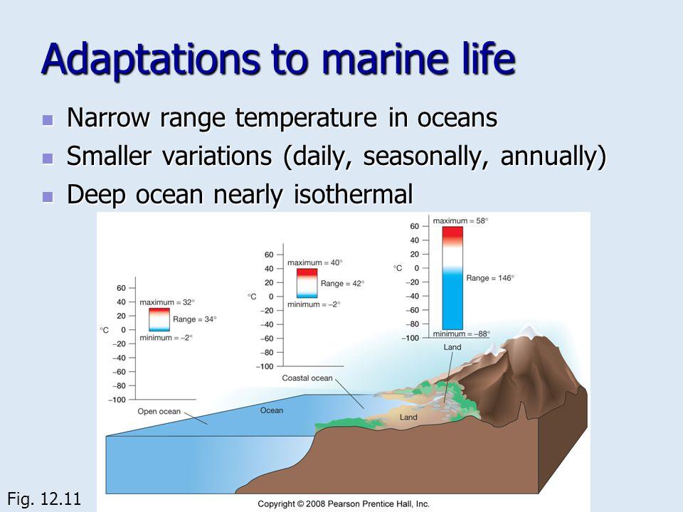 Adaptations to marine life Narrow range temperature in oceans Narrow range temperature in oceans Smaller variations (daily, seasonally, annually) Smal