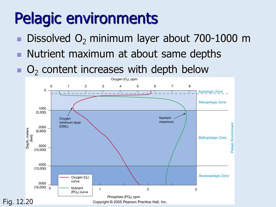 Pelagic environments Dissolved O 2 minimum layer about 700-1000 m Dissolved O 2 minimum layer about 700-1000 m Nutrient maximum at about same depths N
