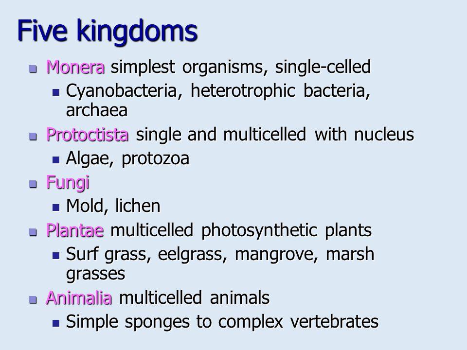Five kingdoms Monera simplest organisms, single-celled Monera simplest organisms, single-celled Cyanobacteria, heterotrophic bacteria, archaea Cyanoba