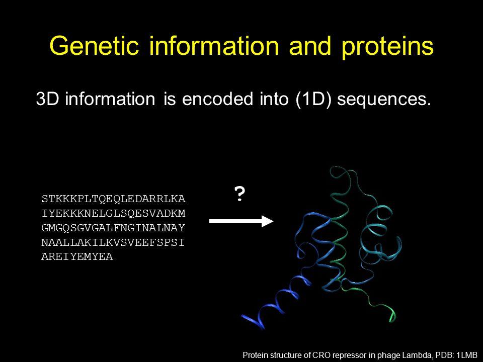Genetic information and proteins 3D information is encoded into (1D) sequences. STKKKPLTQEQLEDARRLKA IYEKKKNELGLSQESVADKM GMGQSGVGALFNGINALNAY NAALLAK