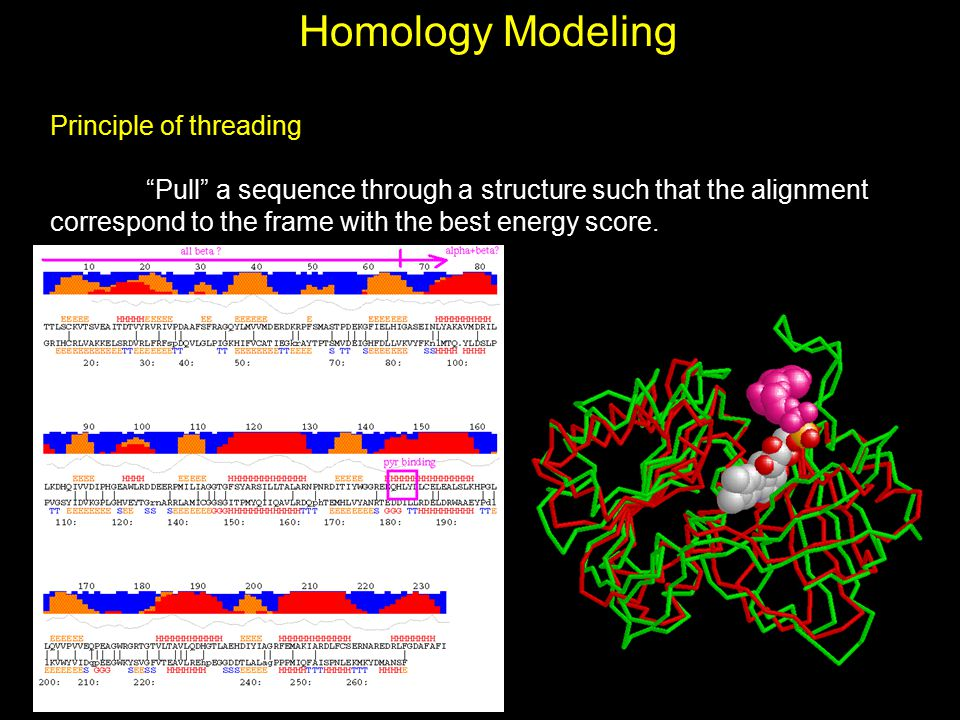"""Homology Modeling Principle of threading """"Pull"""" a sequence through a structure such that the alignment correspond to the frame with the best energy sc"""