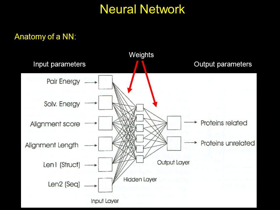 Neural Network Anatomy of a NN: Input parametersOutput parameters Weights