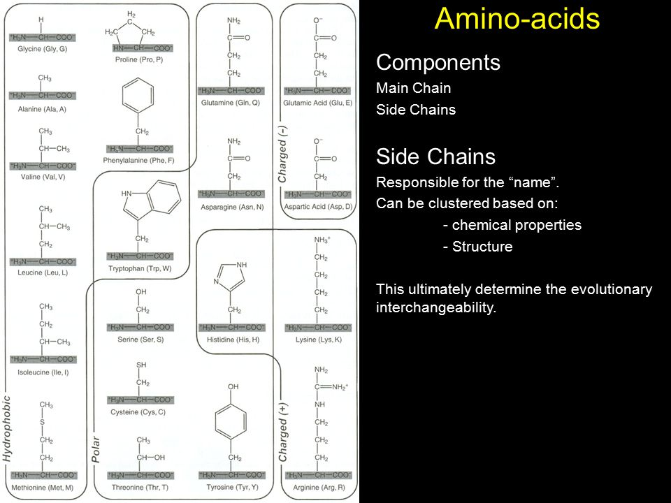 """Amino-acids Components Main Chain Side Chains Responsible for the """"name"""". Can be clustered based on: - chemical properties - Structure This ultimately"""