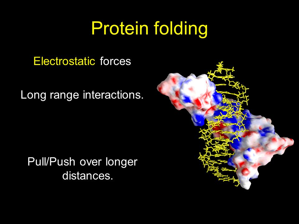 Protein folding Electrostatic forces Long range interactions. Pull/Push over longer distances.