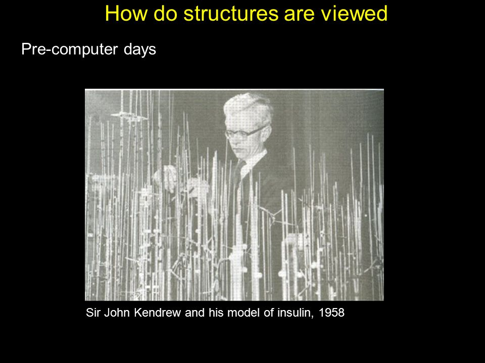 How do structures are viewed Pre-computer days Sir John Kendrew and his model of insulin, 1958