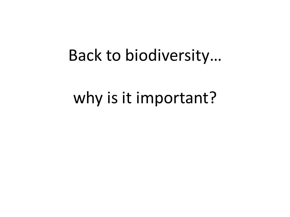 Back to biodiversity… why is it important