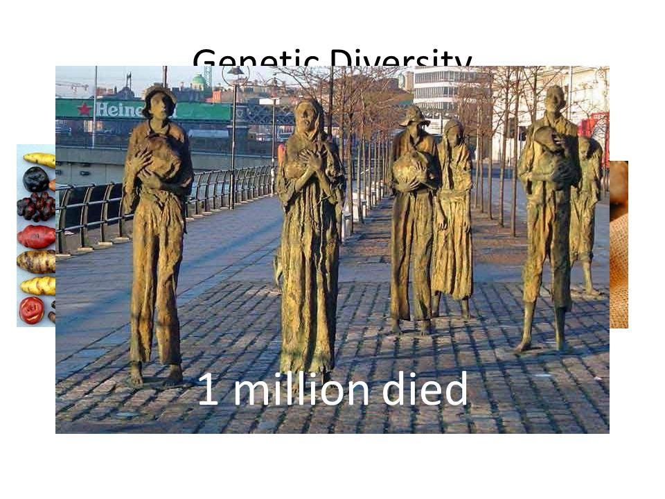 Genetic Diversity 1 million died