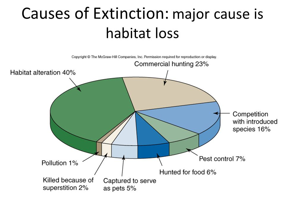 Causes of Extinction: major cause is habitat loss