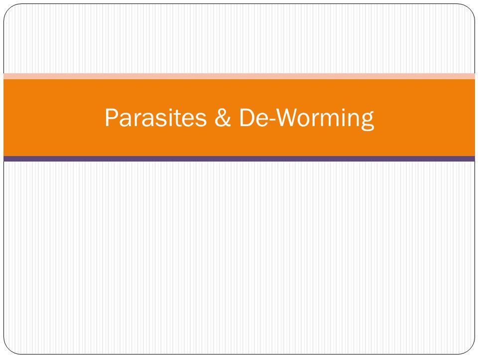 Parasites & De-Worming