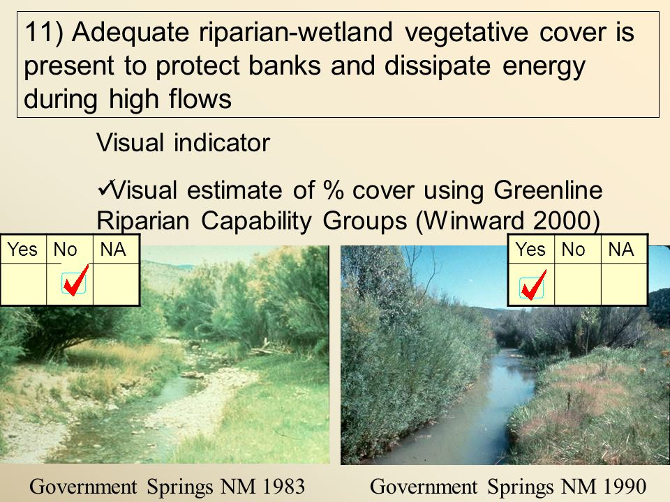 Government Springs NM 1983Government Springs NM 1990 Visual indicator Visual estimate of % cover using Greenline Riparian Capability Groups (Winward 2000) YesNoNAYesNoNA