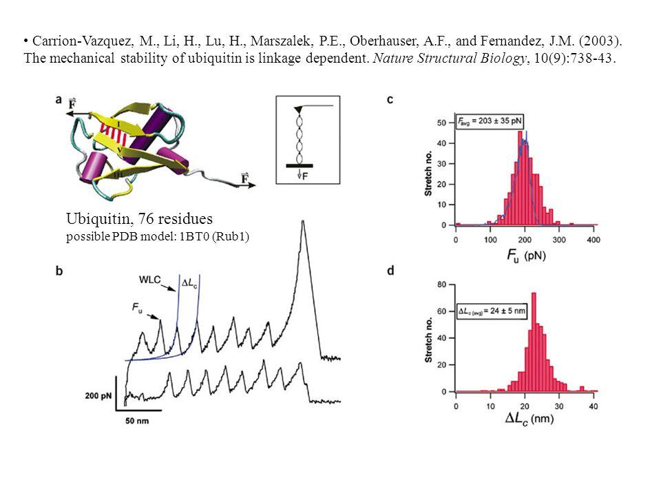 Carrion-Vazquez, M., Li, H., Lu, H., Marszalek, P.E., Oberhauser, A.F., and Fernandez, J.M. (2003). The mechanical stability of ubiquitin is linkage d