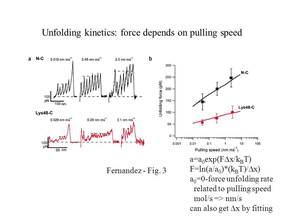 Unfolding kinetics: force depends on pulling speed Fernandez - Fig. 3 a=a 0 exp(F  x/k B T) F=ln(a/a 0 )*(k B T)/  x) a 0 =0-force unfolding rate re