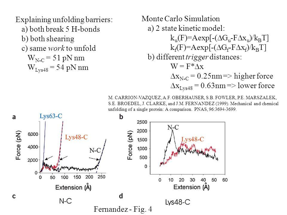 Fernandez - Fig. 4 Explaining unfolding barriers: a) both break 5 H-bonds b) both shearing c) same work to unfold W N-C = 51 pN nm W Lys48 = 54 pN nm