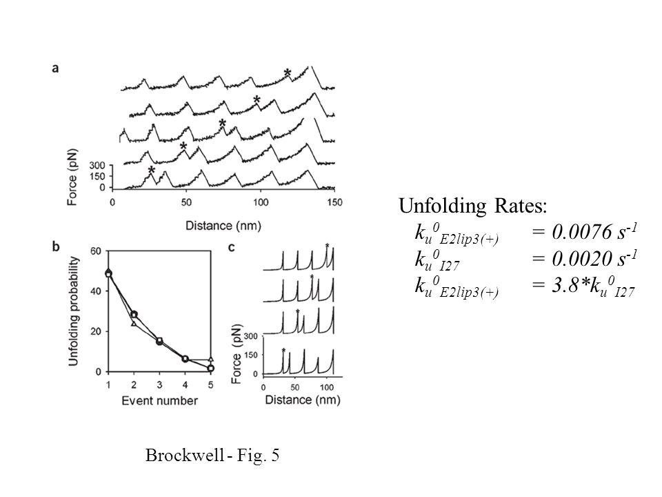 Brockwell - Fig. 5 Unfolding Rates: k u 0 E2lip3(+) = 0.0076 s -1 k u 0 I27 = 0.0020 s -1 k u 0 E2lip3(+) = 3.8*k u 0 I27