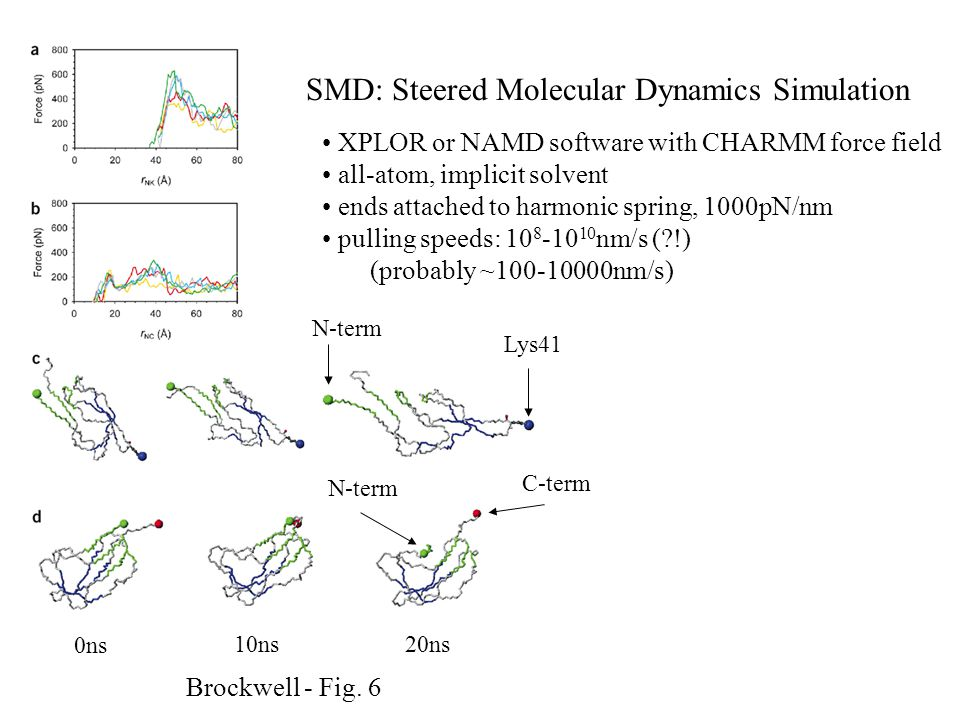 XPLOR or NAMD software with CHARMM force field all-atom, implicit solvent ends attached to harmonic spring, 1000pN/nm pulling speeds: 10 8 -10 10 nm/s ( !) (probably ~100-10000nm/s) Brockwell - Fig.