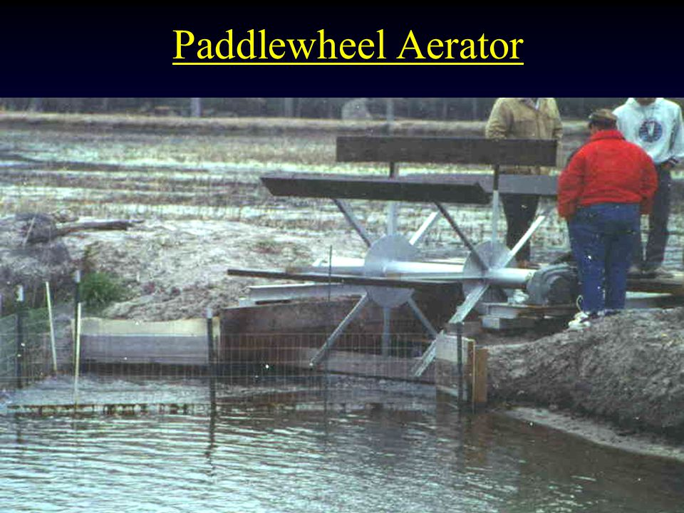Paddlewheel Aerator